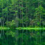 [Japan] Mishaka Pond provides a breathtaking beauty for every season.