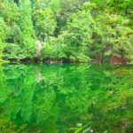 "Never get muddy! Super transparent pond ""Ryugakubo pond"""
