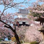 Japan's Top 100 Cherry Blossom Spots in Okinawa and Kyushu Region