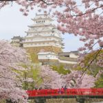 Japan's Top 100 Cherry Blossom Spots in Kansai Region