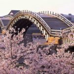 Japan's Top 100 Cherry Blossom Spots in Chugoku and Shikoku Region
