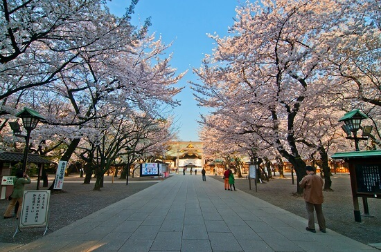 20150220-289-22-tokyo-Cherry-blossoms
